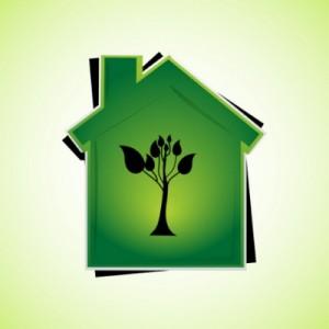 casa-ecologica1