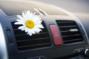 Car conditioning