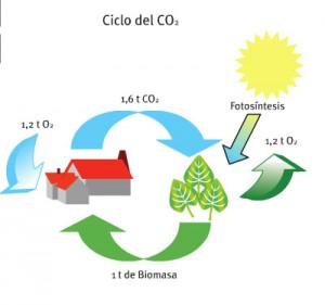 ciclo-co-biomasa